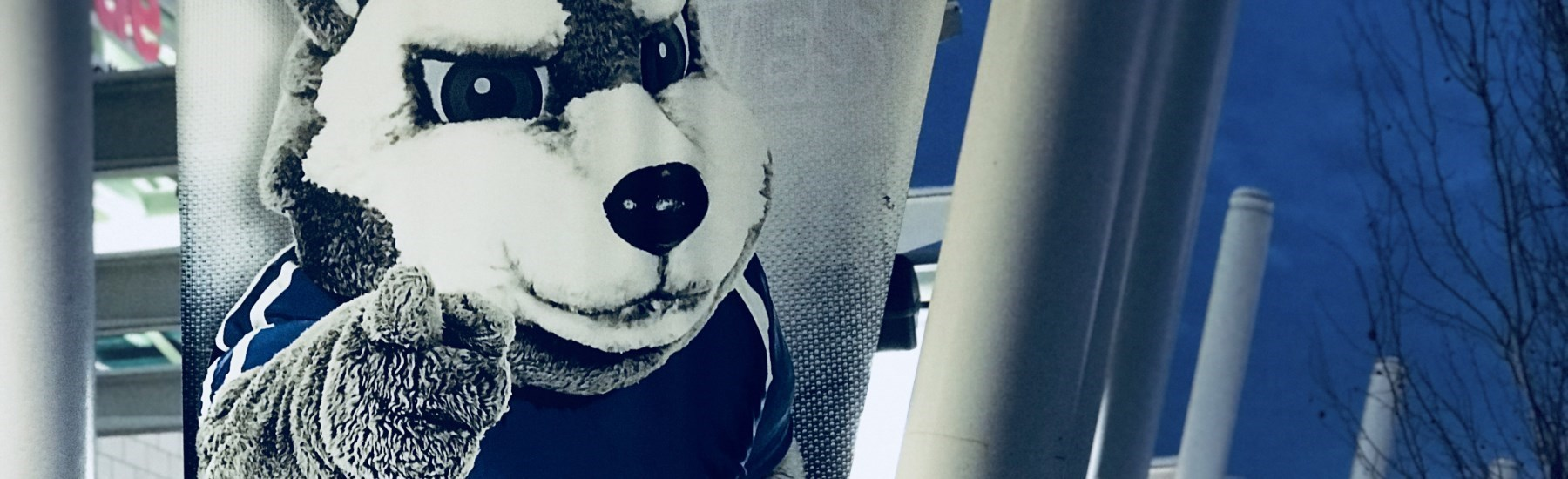Huskies Mascot King working out
